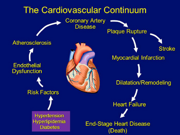 slide-continuum-of-cvd-diseases-350px-high